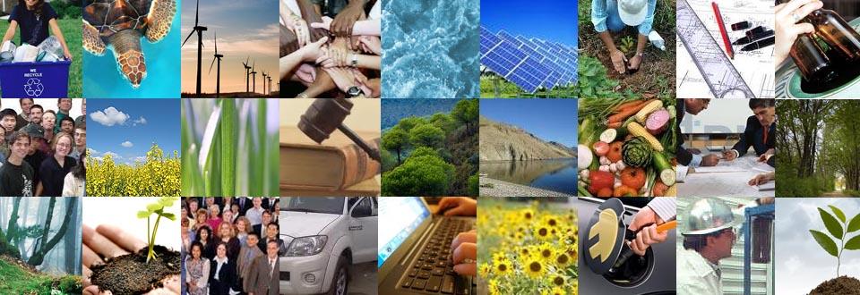 Ideas, liderazgo y compromiso para cuidar el Medio Ambiente